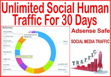 Do 31 days of Human Traffic from social & organic Web Visitors from main search engines