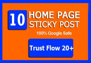 10 High TF CF Permanent HOMEPAGE STICKY PBN Backlinks