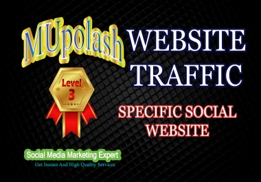 1000+ website traffic/visitor promotion from specific social media