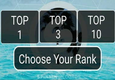 Guaranteed Top One Track Rank Your Spinnin Records Talent Pool  Votes