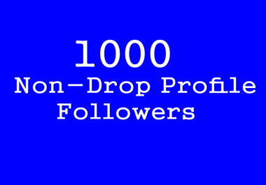 Best 1000+Followers To Your Social Profile In 1 Hours NON DROP