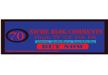 Rank your Site On Google 1st Page With 70 Niche Blog Comments