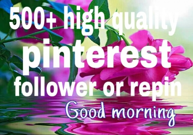 500+ pinterest followers or repins  with profile picture  and  high quality