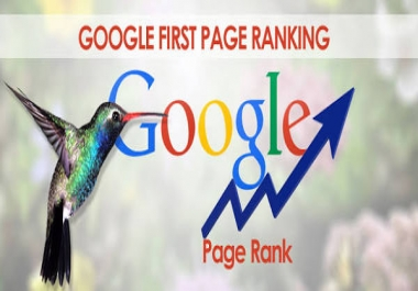 I will   Do SEO First Page Google Ranking For Your Website