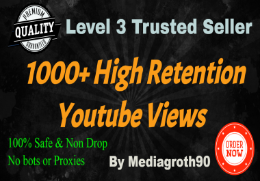 Super Fast 1000-1200 Video Promotion Traffic Lowest Price Ever Instant Delivery