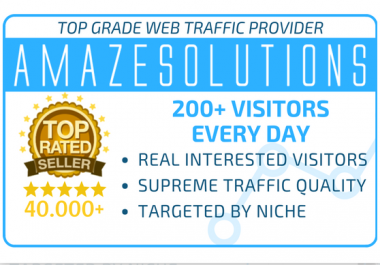 drive 300k keyword targeted traffic to your website