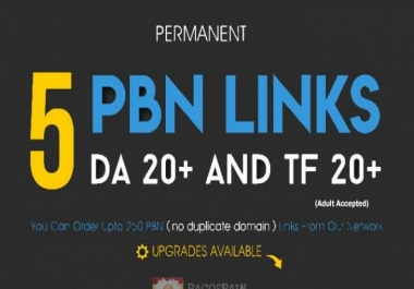 Do 5 High Quality PBN Dofollow Homepage Backlinks With High PR PA DA TF CF