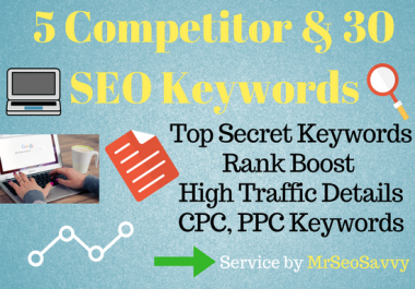 2 Competitor Analysis & 30 SEO Keyword Research