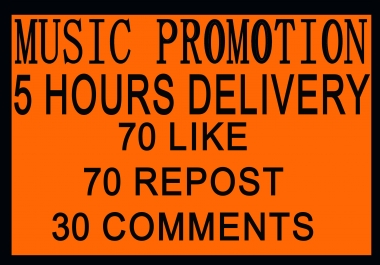 Offering For Music Promotion L-70 & R-70 & C-30 With In 5 Hours Delivery