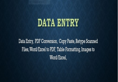 Do any Type of Data Entry,Excel Data Entry, PDF Conversion