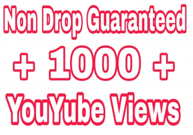 Non Drop 1000+ Video Promotion high quality