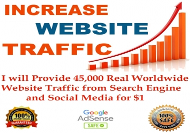 45,000 Real WORLDWIDE Website Traffic from Search Engine and Social Media