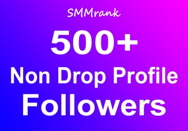 Instant 500+ Profile Followers Real High Quality & Non Drop