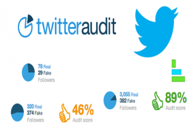 Twitter Audit or Re-audit Twitter Account on twitteraudit.com