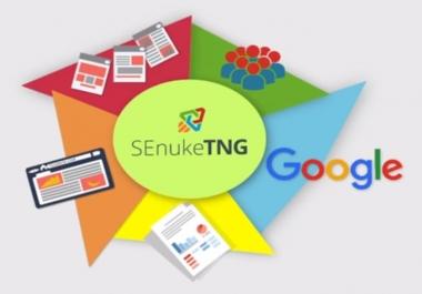 Run SEnuke TNG the Full Monty SEO Campaign Google Bulletproof