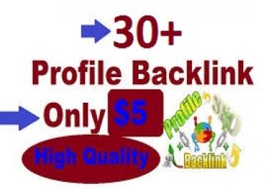 I Give you manually 30 social profile backlink
