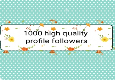 1000+ high quality profile followers non drop