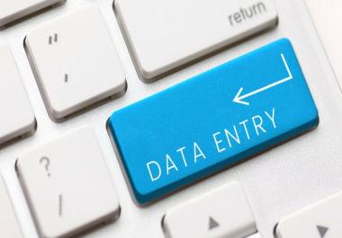 Data entry freelancer