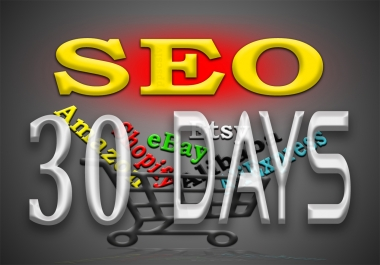 monthly SEO campaign for Amazon, eBay, Etsy, Shopify, Alibaba, AliExpress or any other store