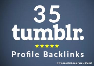 High quality 35 Tumblr backlink rank your website on google
