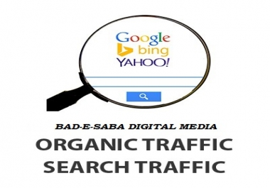 Get 1000+ Organic Traffic For Your Website or Blog !