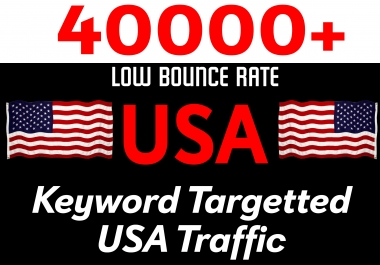 Drive 40000+ Low Bounce Rate USA Keyword Targeted Traffic