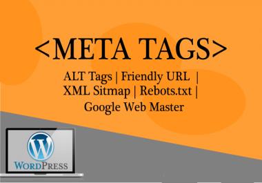 write SEO optimized meta tags for wordpress, shopify and wix