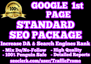 GOOGLE 1st PAGE   STANDARD SEO PACKAGE