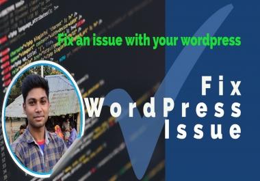 I will fix WordPress issues and errors