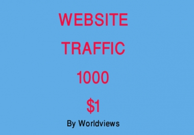 1000 Real Targeted Website Visitors From USA