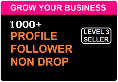 Add 1000 High Quality Profile Followers NON DROP