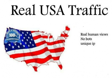 100000+ High Quality USA Human Traffic/Visitors for your website