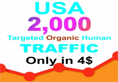 Drive USA Niche Targeted Visitors Website Human Traffic