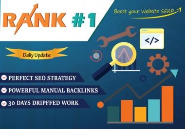Rank Your Website 10 Days Seo Pbn Backlinks Manually