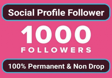 Super Fast 1000 High Quality Social Profile Followers With Non Drop