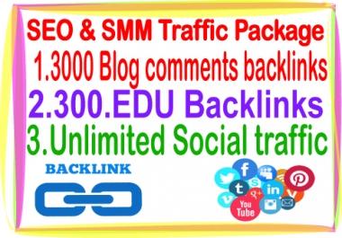 SEO & Social Traffic- Unlimited Social traffic-300 .Edu backlinks-3000 Blog comments backlinks