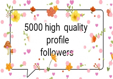 5000 social media high quality profile followers fast delivery