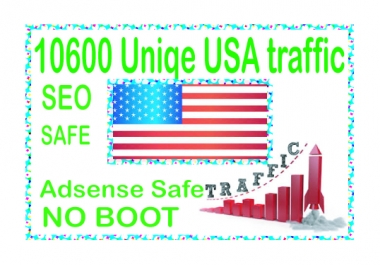 Do 10600 USA Unique Human Traffic from main search engines
