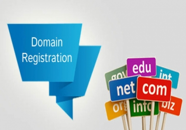 1 Top Level Domain for 1 year