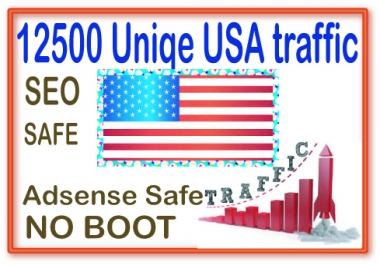 Do 12500 Safe real web traffic for from main search engines & social site