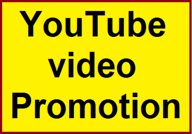 High Quality  YouTube Video Marketing social Media Promotion