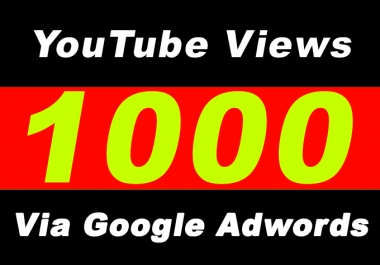 Youtube Video Promotion Via Google Adwords for 1000 Or 1K Plus Targeted Audience