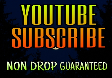 HQ Real YouTube video Promotion Life time Non Drop Service