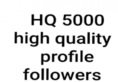 5000+ HIGH QUALITY PROFILE FOLLOWERS Non-Drop