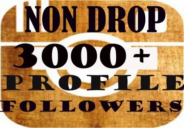 3000+Permanent Profile Followers In 1-2H