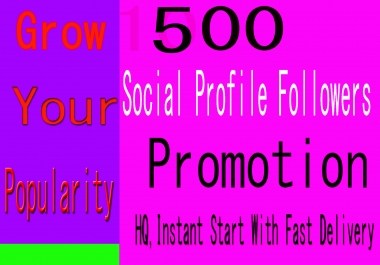 500+ High Quality Social Profile Followers in 12 Hours