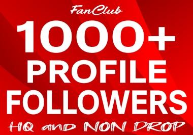 Add 1000+ Profile Followers High Quality & Non Drop Service