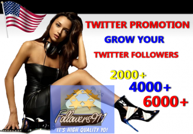 I Will Professionally Promote Your Twitter Account