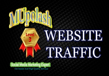 12000+ Real Human websites Traffic/visitors instantly