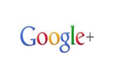 give you usa 500+ google plus like or  followers